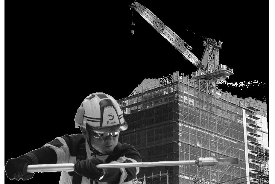 rmoism-building